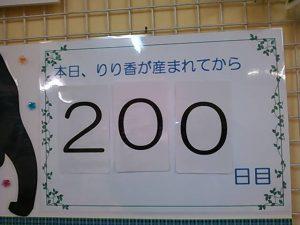 o0640048012887299900